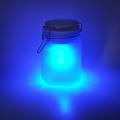 Blue Sun Jar aka Moon Jar