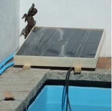 Solar collector for swimming pool heater