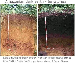 Terra preta - dark soil in Amazon basin caused by high carbon concentrations