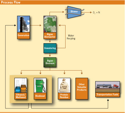 Power generation and fuel creation from algae.