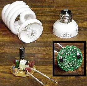 Disassembled CFL bulb showing the electronic ballast