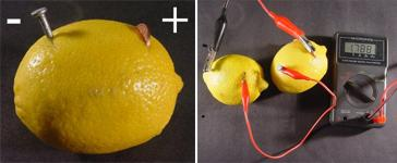 Measuring the voltage generated by a lemon battery