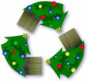 recycle your christmas tree How to Recycle Your Christmas Tree