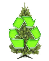 Christmas Tree Recycling - Recycling