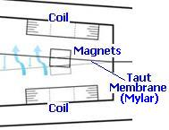 Windbelt magnet and coils